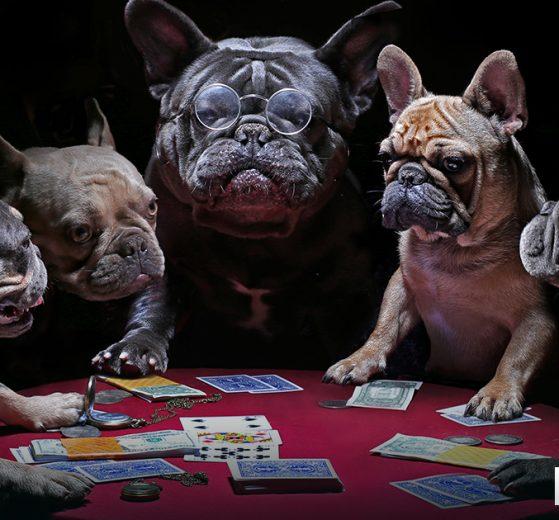 psicologia do poquer